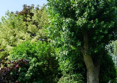 Gardens in Churchfield House