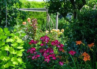 Churchfield House gardens